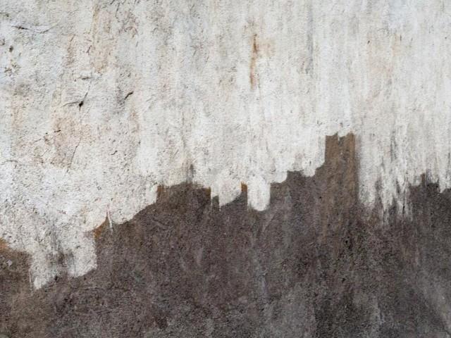 Paesaggi Murali – Metropolis